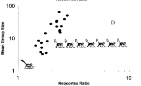 The social brain hypothesis: using graphs with random monkeys to explain why our brains are big