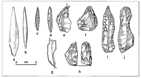 A sample of Aurignacian tools, the first made by humans in Europe