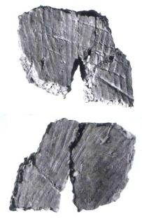Xianrendong sherds