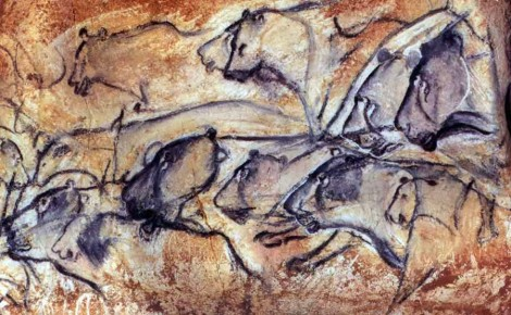 Some lions from Chauvet cavet