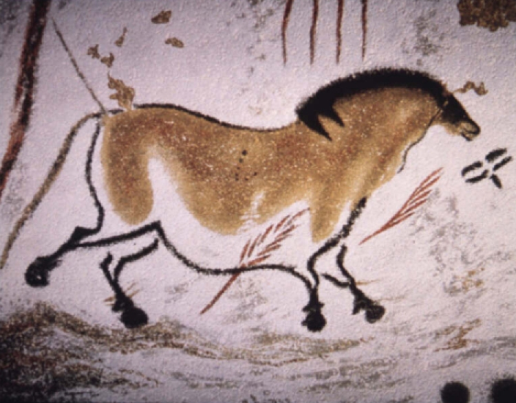 Lascaux horse cave art