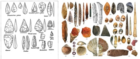 Some Neanderthal tools (left) and huuman tools (right)