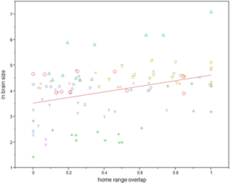 The correlation between group overlap and brain size identified by the research